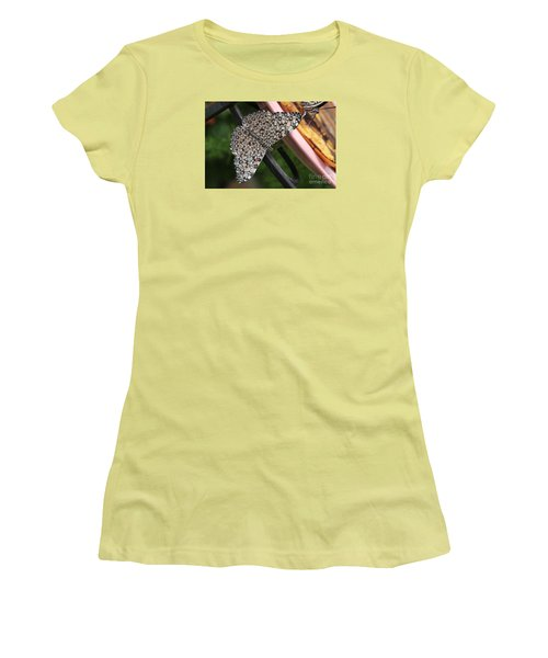 Women's T-Shirt (Junior Cut) featuring the photograph Variable Craker Butterfly #2 by Judy Whitton