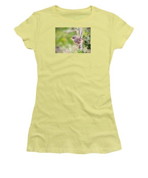 Variegated Fairywren  Women's T-Shirt (Junior Cut) by Kym Clarke