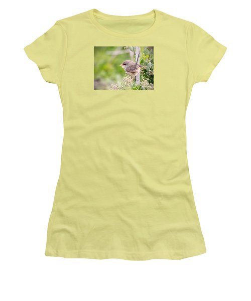 Variegated Fairywren  Women's T-Shirt (Athletic Fit)