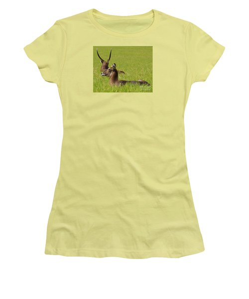 Waterbuck Antelope Women's T-Shirt (Athletic Fit)
