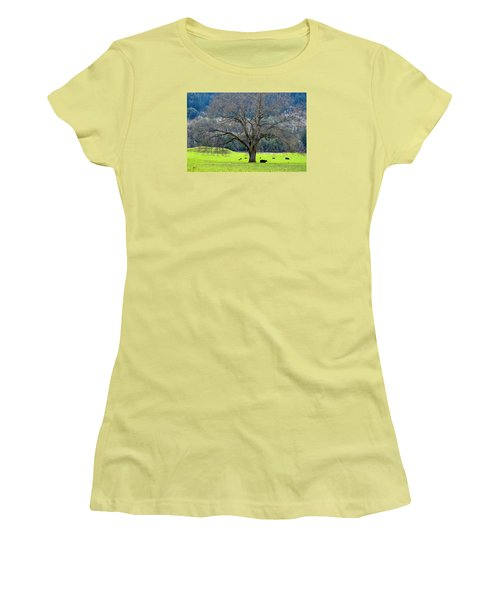 Winter Tree With Cows By The Umpqua River Women's T-Shirt (Junior Cut) by Michele Avanti