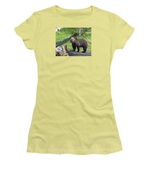 Yellowstone Grizzlies 2 Women's T-Shirt (Junior Cut) by George Jones