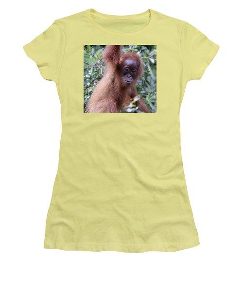 Women's T-Shirt (Junior Cut) featuring the pyrography Young Orangutan Kiss by Shoal Hollingsworth