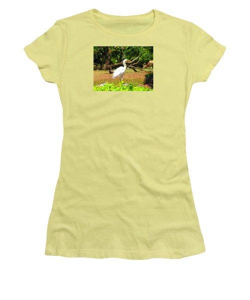 Zoo Women's T-Shirt (Junior Cut) by Oleg Zavarzin