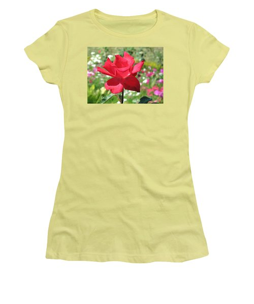 Women's T-Shirt (Junior Cut) featuring the photograph A Beautiful Red Flower Growing At Home by Ashish Agarwal