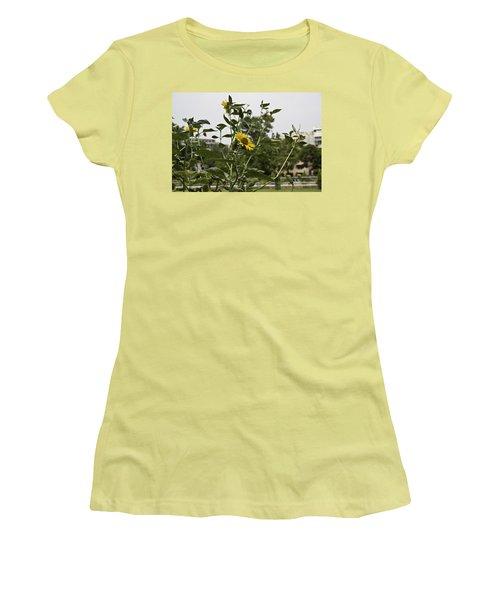 Beautiful Yellow Flower In A Garden Women's T-Shirt (Junior Cut) by Ashish Agarwal