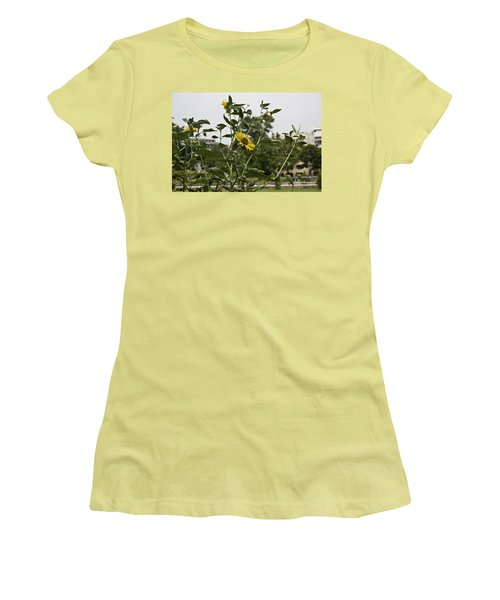 Women's T-Shirt (Junior Cut) featuring the photograph Beautiful Yellow Flower In A Garden by Ashish Agarwal