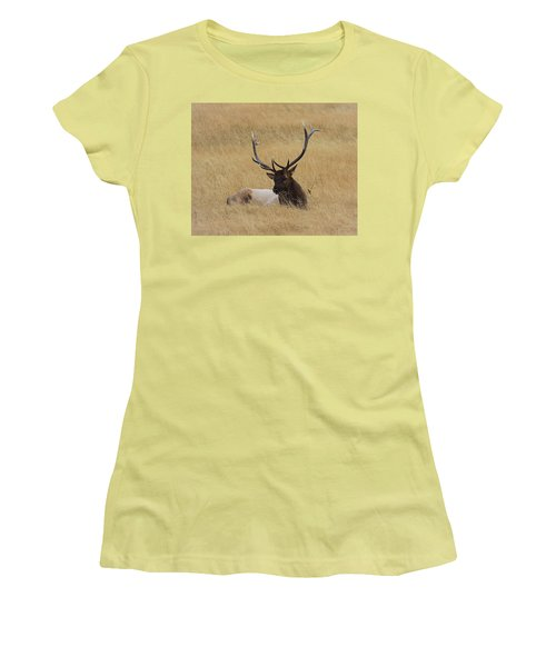 Women's T-Shirt (Junior Cut) featuring the photograph Elk In The Meadow by Steve McKinzie