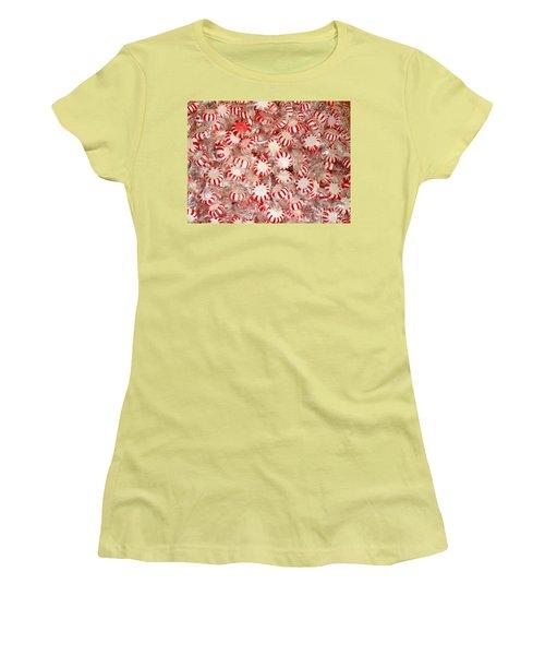 Fun  Mints Women's T-Shirt (Athletic Fit)