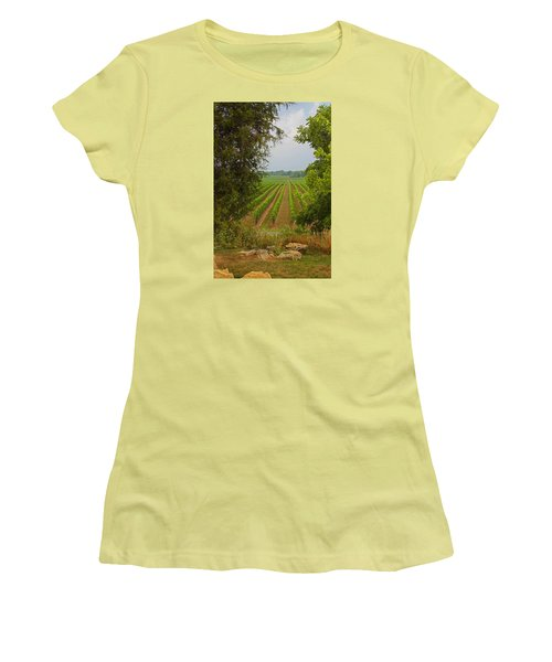 Vineyard On The Bench Women's T-Shirt (Junior Cut) by John Stuart Webbstock
