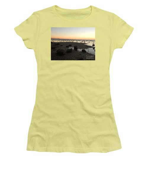 Beach Rocks Barnacles And Birds Women's T-Shirt (Athletic Fit)