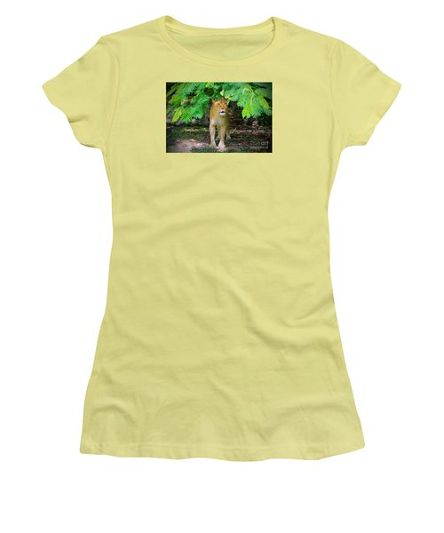 Women's T-Shirt (Junior Cut) featuring the painting  Emerging From The Shadows by Judy Kay