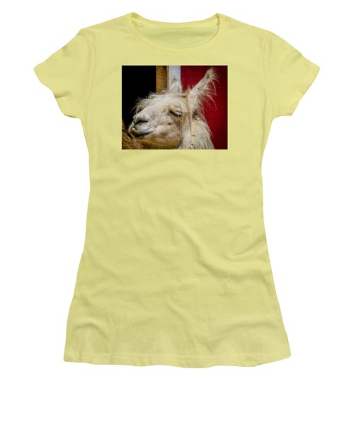 Bad Hair Day 3 Women's T-Shirt (Athletic Fit)