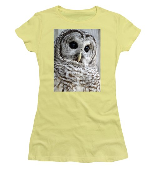 Barred Owl Women's T-Shirt (Junior Cut) by Rebecca Overton