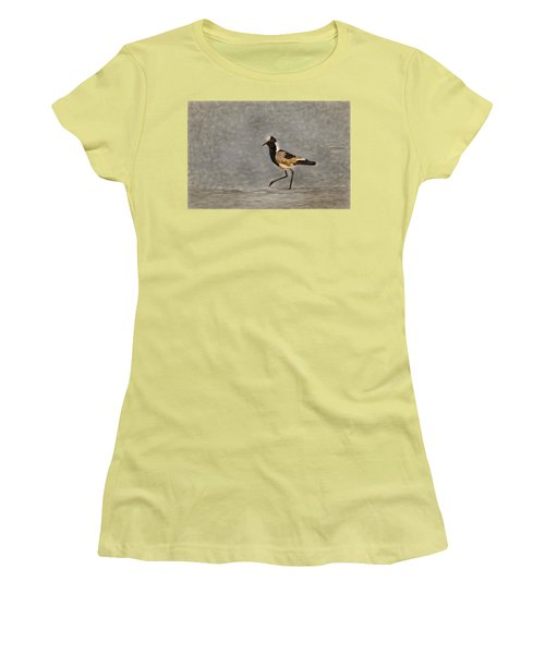 Black-winged Lapwing Art Women's T-Shirt (Junior Cut) by Kay Brewer