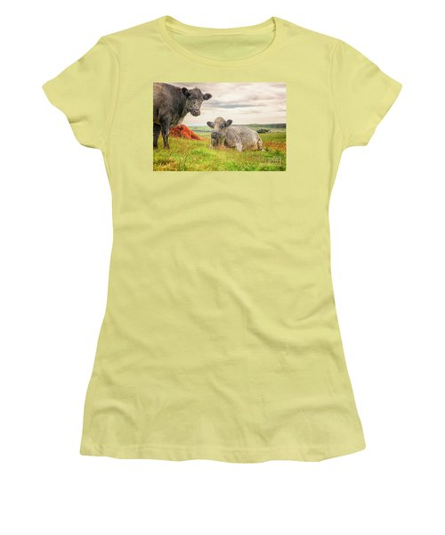Colorful Highland Cattle Women's T-Shirt (Junior Cut) by Patricia Hofmeester