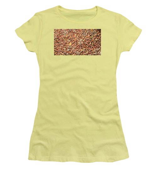Donguri Means Acorn  Women's T-Shirt (Athletic Fit)