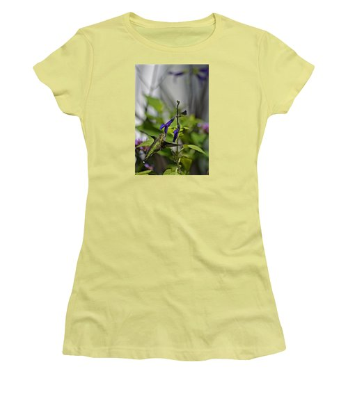 Hummingbird Women's T-Shirt (Junior Cut) by Tim Good