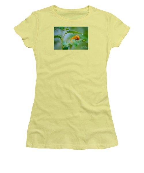 Morning Dew Women's T-Shirt (Junior Cut) by Patrick Shupert