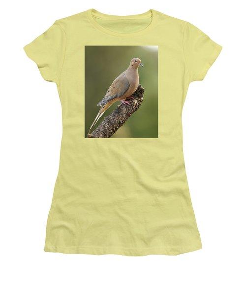 Mourning Dove Women's T-Shirt (Junior Cut) by Doug Herr
