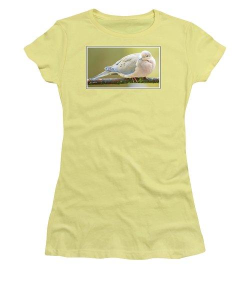 Mourning Dove On Tree Branch Women's T-Shirt (Junior Cut) by A Gurmankin