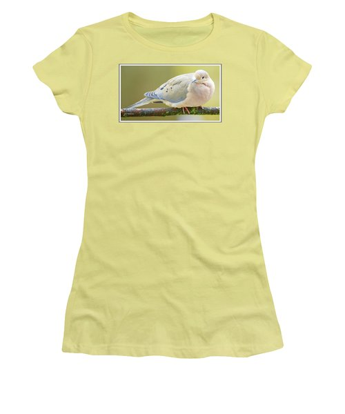 Mourning Dove On Tree Branch Women's T-Shirt (Athletic Fit)