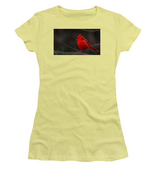 Women's T-Shirt (Junior Cut) featuring the photograph Quality Quiet Time  by John Harding