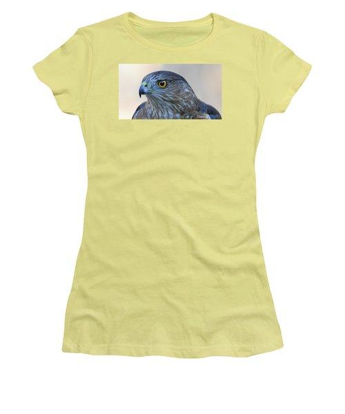 Sharp-shinned Hawk Women's T-Shirt (Junior Cut) by Diane Giurco