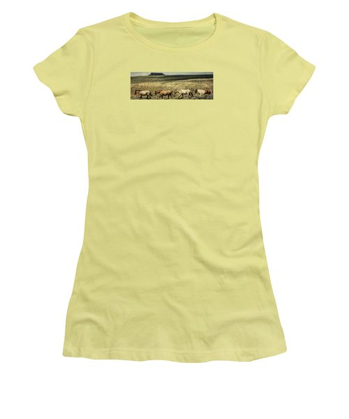 Walking The Line At Pilot Butte Women's T-Shirt (Athletic Fit)