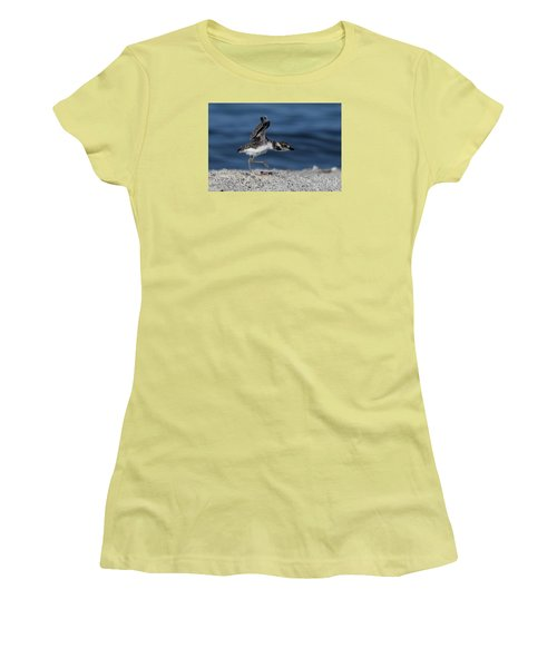 Wilson's Plover Women's T-Shirt (Athletic Fit)