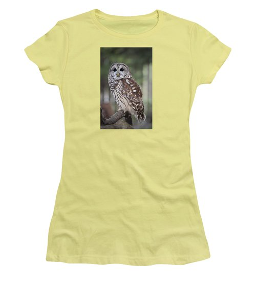 Barred Owl Women's T-Shirt (Junior Cut) by Tyson and Kathy Smith