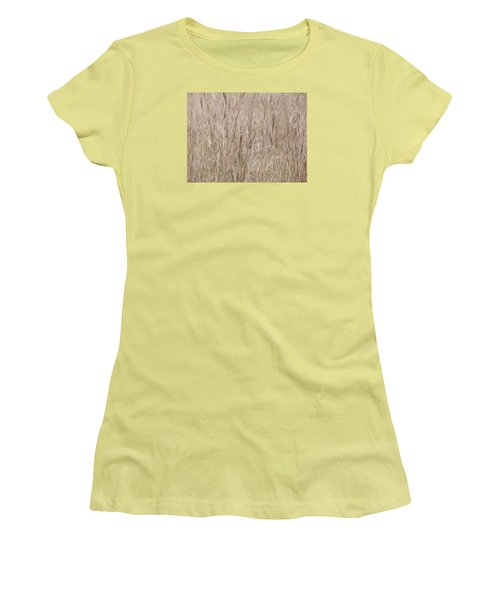 Brushstrokes Women's T-Shirt (Junior Cut) by Tim Good