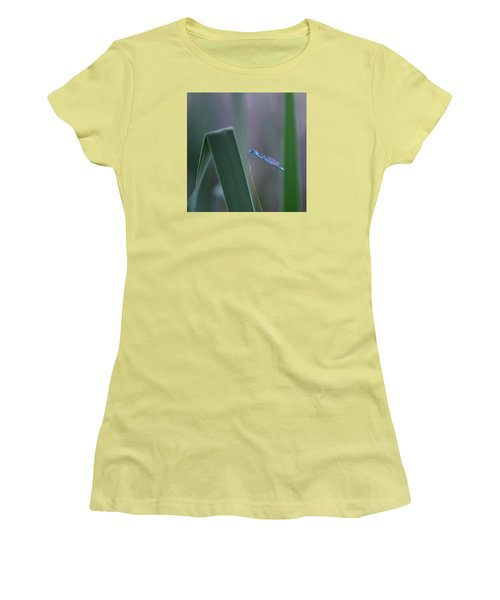 Women's T-Shirt (Junior Cut) featuring the photograph Dragonfly by Nikki McInnes