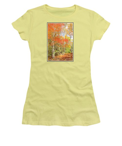 Women's T-Shirt (Junior Cut) featuring the digital art Forest Interior Autumn Pocono Mountains Pennsylvania by A Gurmankin