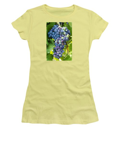 Red Wine Grapes Women's T-Shirt (Junior Cut) by Teri Virbickis