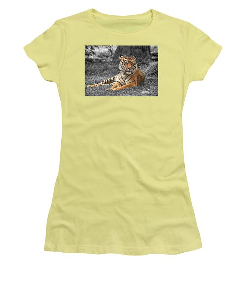A Tiger Relaxing On A Cool Afternoon II Women's T-Shirt (Athletic Fit)