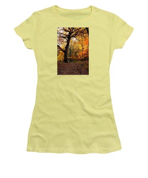 A Walk In The Woods 2 Women's T-Shirt (Junior Cut) by Steven Clipperton