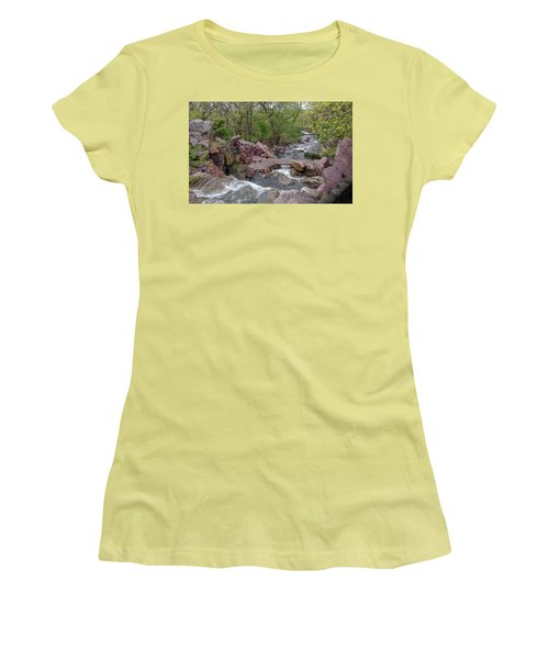 Above Winnewissa Falls 2 Women's T-Shirt (Athletic Fit)