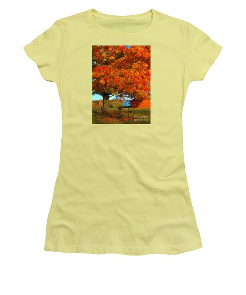 Adirondack Autumn Color Brush Women's T-Shirt (Junior Cut) by Diane E Berry