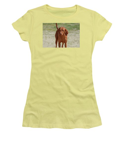 Adorable Redbone Coonhound Standing Alone Women's T-Shirt (Athletic Fit)