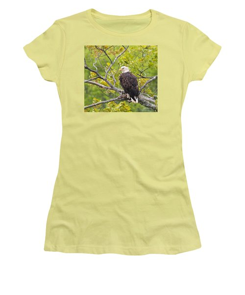 Women's T-Shirt (Junior Cut) featuring the photograph Adult Bald Eagle by Debbie Stahre