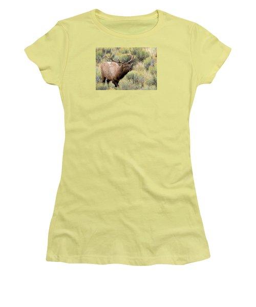 Adventure Women's T-Shirt (Athletic Fit)