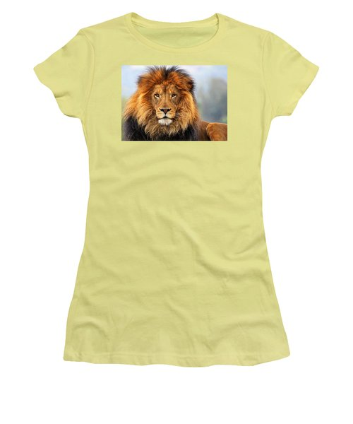 African Lion 1 Women's T-Shirt (Athletic Fit)
