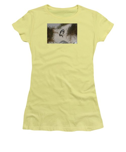 African Penguin On A Mission Women's T-Shirt (Junior Cut) by Bev Conover