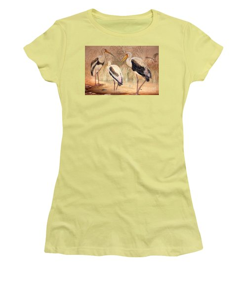 African Tantalus Pseudotantalus Ibis Women's T-Shirt (Athletic Fit)