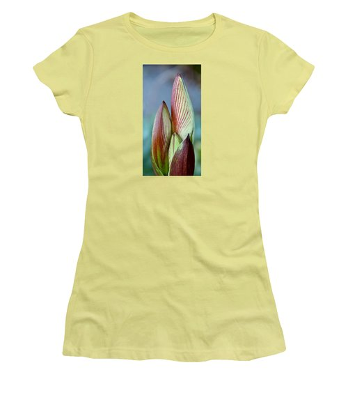 Women's T-Shirt (Junior Cut) featuring the photograph Amaryllis Buds by Werner Lehmann