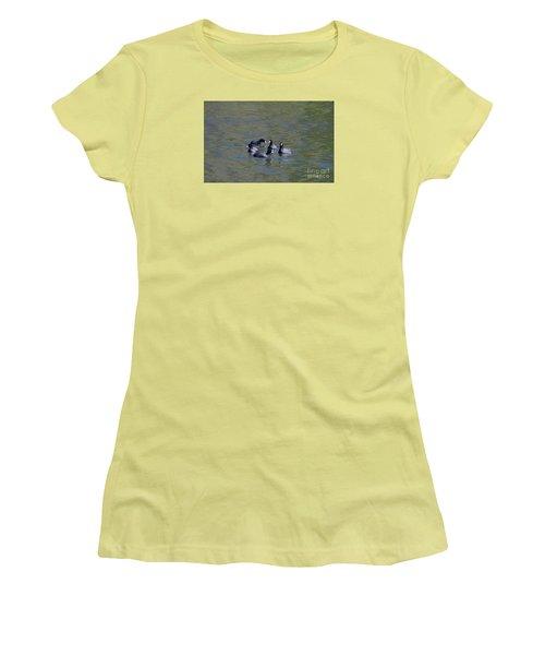 American Coots 20120405_278a Women's T-Shirt (Junior Cut) by Tina Hopkins