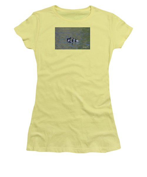 American Coots 20120405_278a Women's T-Shirt (Athletic Fit)