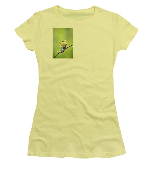 American Goldfinch In The Rain Women's T-Shirt (Athletic Fit)