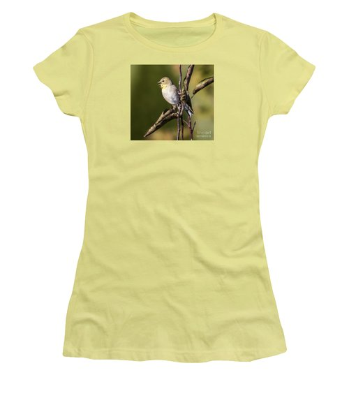 Women's T-Shirt (Junior Cut) featuring the photograph American Goldfinch In Fall Colors  by Ricky L Jones